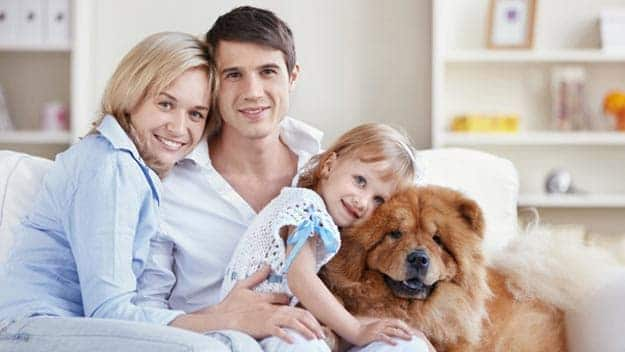 Wills & Trusts dog-young-family Direct Wills St Johns